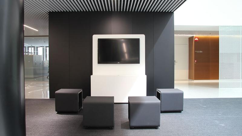 Multimedia y asientos VIVA